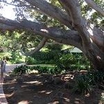 Photo of Four Seasons Resort The Biltmore Santa Barbara