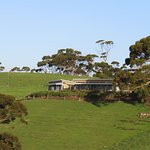 Foto de Snellings View