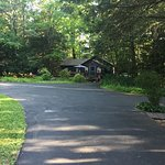 Driveway leading up to cottage #4