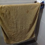 "This is my ""clean"" towel. Disgusting!"