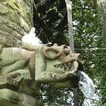 Waterspout on one of the follies at Westonbury MillHouse Gardens