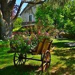 Le Jardin Sarlat Picture