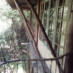 one of a tree house room from outside