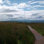 Transmitter and Boardwalk