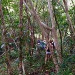 Trekking trip with Havana Beach Resort