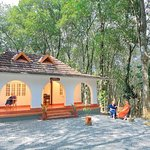 Ayurveda rooms facing the rubber plantation