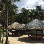 Foto de Mayan Princess Beach & Dive Resort