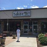 Sakura Japanese Grill & Sushi Bar Photo