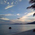 Photo de Palm Coco Mantra