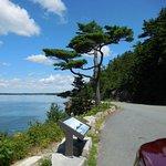 Off Harborside Drive