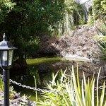 Pequeña laguna en el jardín del hotel