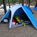 Cedar Grove campsite