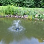 Fontaine dans le bassin arrière de l'auberge