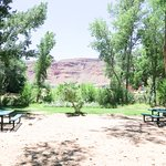 Photo de Up the Creek Campground