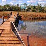 National Park, Brasília - Breazil