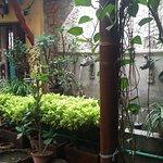 Foto de Ambassador Garden Home