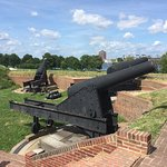 Even more cannons