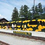 Salamander Train in Puchberg am Schneeberg