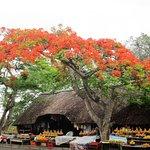 AmaZulu Lodge Foto