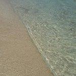 Photo de 1191429