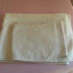 Gli asciugamani messi a disposizione nella camera.