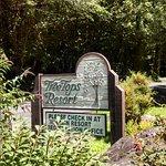 Снимок Tree Tops Resort