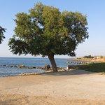 Alkionis Beach Apartments Foto