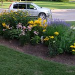 Front Bed for Flowers.... Not You ;-)