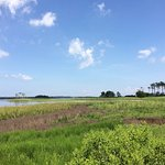 View from the Gordon's Pond Trail just as you're getting started from Cape Henlopen State Park