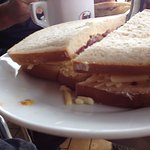 Cheese and red onion sandwich