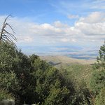Mt. Lemmon Road Trip