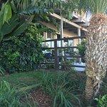 BEST WESTERN PLUS Island Palms Hotel & Marina Photo