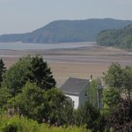 View from our cottage at low tide - the entire area of sand seen fills with water at high tide