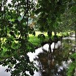 rivière au bord de la propriété