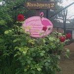 Vogelpark Niendorf Foto