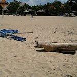 Foto de The Tanjung Benoa Beach Resort - Bali