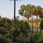 Aussicht in den Garten von einem Balkon in der 2. Etage