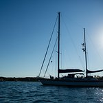 Sea Witch Sailing Charters