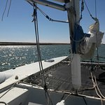 Bay Wind Sailing Charters