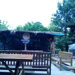 Kadir's Tree House Foto