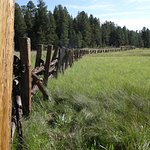 Rustic fence along Hannagan Meadow
