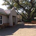 Shady courtyard