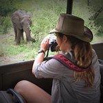 Gambar Flight of the Eagle Safaris & Tours
