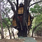 Marc's Treehouse Lodge-bild