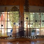 An interactive display compares the sequoias to other massive objects.