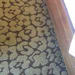 Photo de Hilton Garden Inn New Orleans Convention Center