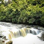 Falls of Clyde Foto