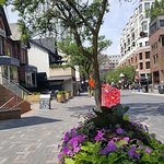 More of Yorkville