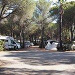 Photo de Camping La Baume - Residence La Palmeraie
