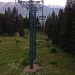 Scenic chairlift with mountain flowers